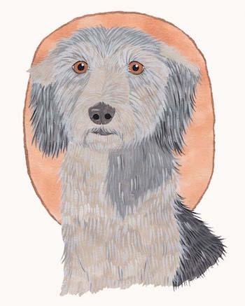 Paint A Pet Portrait