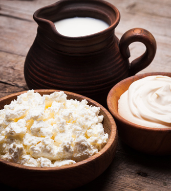 Cheese & Yoghurt Making Workshop