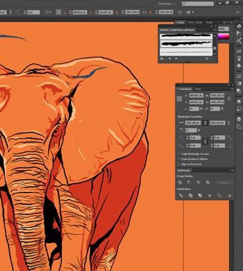 Intro to Illustrator