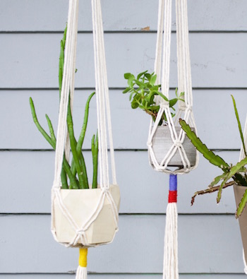 Macrame Plant Hangers with Little Feral