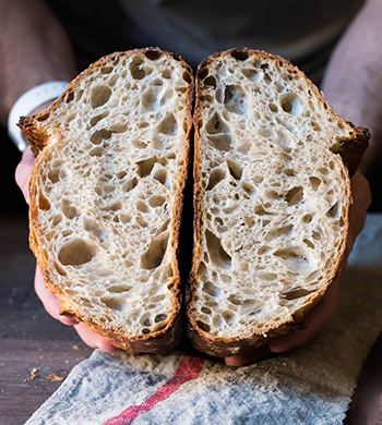Sourdough Basics