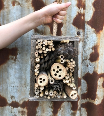 Build A Bee Hotel: Native Bee Masterclass