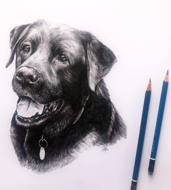 Draw Your Doggo